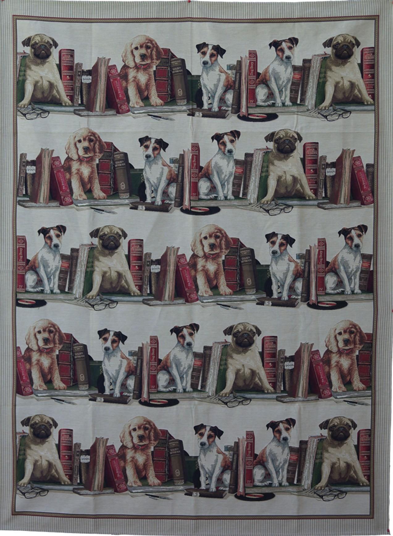 Plaid chiens et bibliothèque
