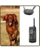 Accessoires chien chasse