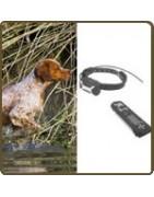 Collier de repérage chien de chasse